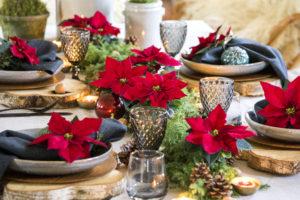 Tilfeldig eller nøye planlagt; borddekning med naturmaterialer og julestjerner
