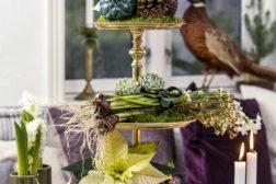 Etasjefat dekorert med løkblomster, sukkulenter og selvsagt julestjerner