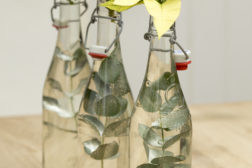 En enkel juleblomst i flaske blir en dekorasjon når du setter flere sammen