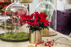 God jul med naturmaterialer