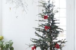 Atlasseder juletre, smykket med røde julestjerner som dekorasjon