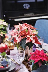 Borddekorasjon med julestjerner