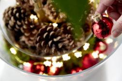 Velg lysende potter til juleblomstene
