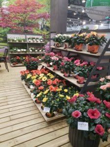 Utstilling for gartnere - stadig nyheter å velge mellom!