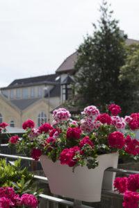 Blomsterkasser for rekkverk - blomster i byen