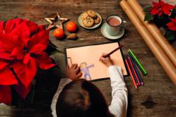 Julestjerne 2019, ønskeliste til jul