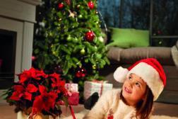 Julestjerne 2019, ønskeliste til jul 3