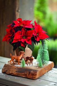 Juledekorasjon med landskap