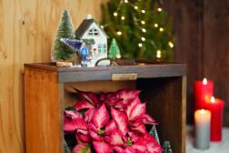 Juledekorasjon med gjenbruk