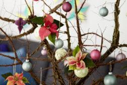 Julestjerne 2019, fargerikt julehjem 34